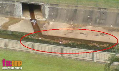 Bishan canal left dirty and choked since clean-up more than a year ago