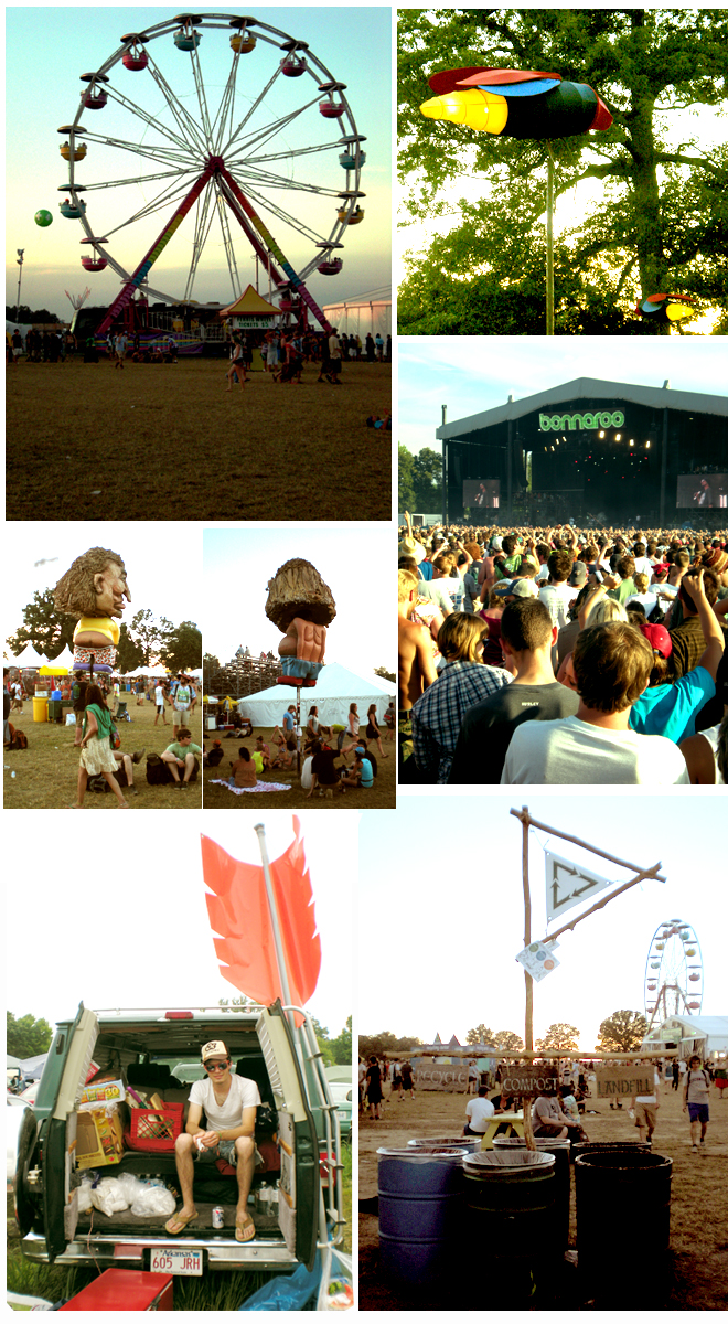 Bonnaroo Collage