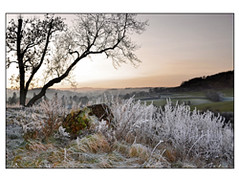 Sun Goes Down on a Frosty Day (Chris Tid) Tags: wales frost south wells hoar builth llanelwydd