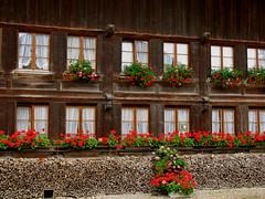 Bauernhaus in Aarwangen , Kanton Bern (chrchr_75) Tags: hurni christoph schweiz suisse switzerland svizzera suissa swiss kanton bern berne berna bärn chrchr chrchr75 chrigu chriguhurni 0906 kantonbern albumbernerbauernhäuser landwirtschaft haus building bauernhaus bauer farmer farm hurni090625