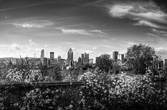 Montreal in Black and white!