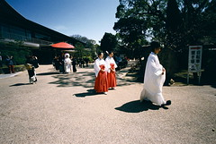 wedding procession (2) (troutfactory) Tags: wedding film japan umbrella japanese costume clothing shrine traditional voigtlander rangefinder wideangle parasol  osaka priest analogue procession miko superia400 shinto kansai 15mm bessal  heliar garb  shrinemaiden  kannushi sumiyoshitaisha