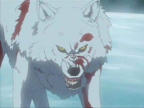 Angry Kiba by Wolf Paws. Anime. Anyone can see this photo