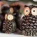 Owl-keh