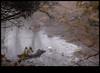 xDSC_2013 copy (sajeshjose) Tags: camp wildlife bangalore sash bannerghatta sajesh bennerghatta ireboot