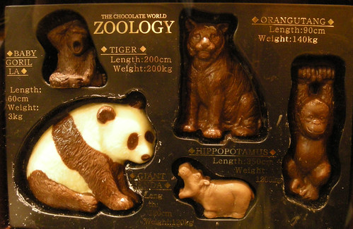 ZOOLOGYセット