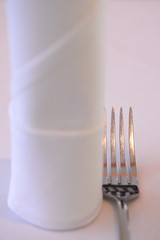 Napkin and fork - DSC_3664