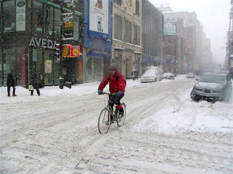 Montreal bike rider