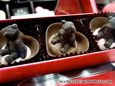 Small chocolate bears