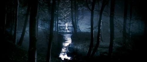 Película El Anticristo bosque