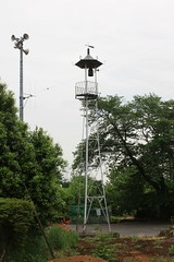 高倉の火の見櫓(鶴ヶ島市)