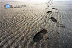 footprints01 (callbusybiz) Tags: life nikon shot footprints snap thinking seashore  d3           chunbin