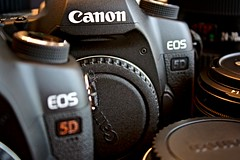 The Twins - Canon EOS 5D Mark II (Matt Pasant) Tags: camera slr canon gear cameras canon5d fullframe truestory lense ohcrap dsrl canoneos5dmarkii 5dmark2 canon5dmarkii idostupidthingsonoccasion actuallyoften