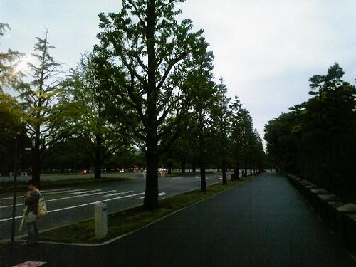 20090529皇居周辺
