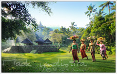 Morning in Tenganan #2 (myudistira) Tags: morning bali work indonesia temple photographer village traditional prayer culture made pura 2009 freelance adat budaya balinese pandan fotografer unik perang yudis tenganan baliview baliphotographer yudistira mekare myudistira madeyudistira yudist