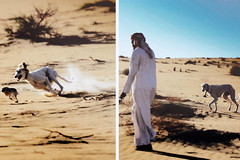 (`Anonymous) Tags: by sony 300mm alpha anonymous fahad  a350  almarri diptychphotography