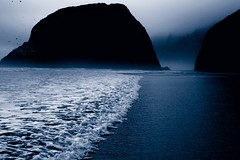 moody blues (Andy Kennelly) Tags: ocean blue white beach wet water birds silhouette rock misty fog oregon dark sand waves moody pacific ominous monotone shore edge cannon