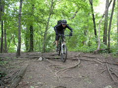 Mountain Biking at Highbridge Park