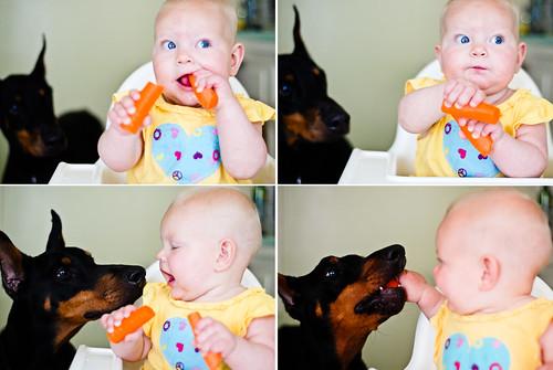 feedingbeau