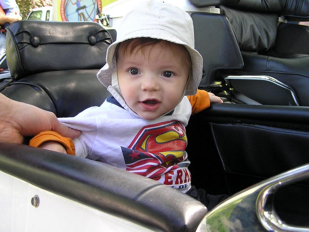 cutest sidecar passenger ever