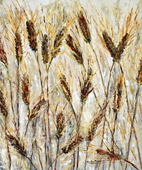 Wheat (Il colorista) Tags: estate wheat campagna pane vita grano mietitura raccolto