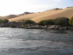 Nil bei Assuan (naturgucker.de) Tags: gypten naturguckerde cthorstenschwandt assuannsg ngidn1218335978