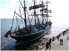 Leinen-los (wollewilly) Tags: sailing tallship elbe kste sedov cuxhaven sailship steubenhft