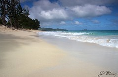 Beach life (gwhiteway) Tags: beach hawaii oahu waimanalo colorphotoaward