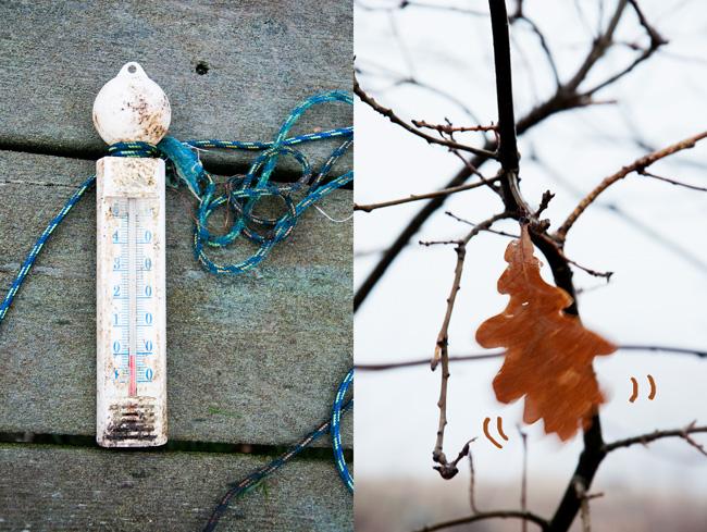 0 grader