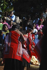 Traditional Swazi Wedding (breadfacej) Tags: africa wedding red dance nikon aids hiv chief traditional peak nurse swaziland cheif gall bladder d80 piggs emkuzweni