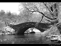 Winter Bridge (Natasja ❤) Tags: park new york city nyc newyorkcity bridge winter blackandwhite bw usa white snow ny newyork black america canon eos december manhattan central frame snowing firstsnow zwart wit snowscene thebigapple 40d canoneos40d centrappark