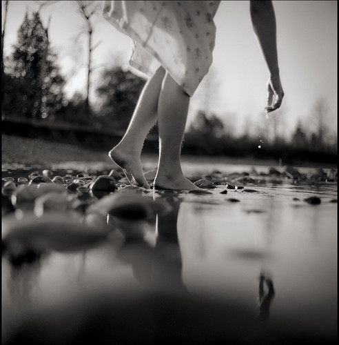 glistening... / Daniel Southard