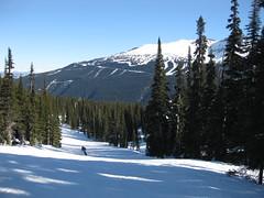 Ski run at Whistler (Wildcat Dunny) Tags: canada mountains whistler skiing bc skiresort