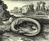 Lambspring Woodcut 1625 Ouroboros Showing itself primarily