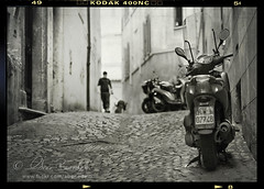 walking the dog () Tags: street dog andy cane alley strada vespa andrea andrew cobblestones leash moped vicolo sanpietrini 50mmf14 piaggio motorino walkingthedog benedetti guinzaglio nikond90  aspassocolcane