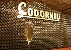 Codorníu contará en julio con una nueva bodega en Argentina