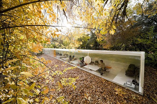 Architect Selgas Cano's Hidden Forest Office