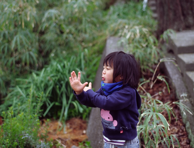 090330_MG_MF50mmF1.4_KODAK_E100G-3-02