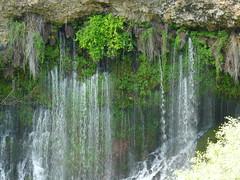 Burney Falls (Vurnman) Tags: california forest waterfall stream falls norcal burneyfalls shastacounty mcartherburneystatepark