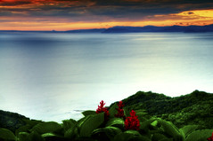 """ Villa Caleta "" (Alfredo11) Tags: flowers sea sky seascape flores water clouds mar costarica paisaje textures cielo nubes alfredo vegetation siluetas texturas vegetacion silohuettes nikon1755mm28 nikod300"
