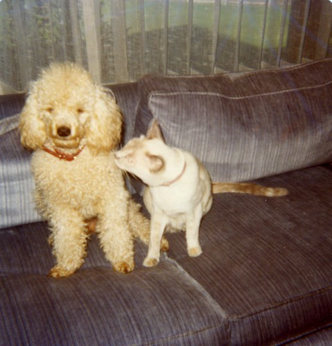 Carmel and Snowy - sometime in 1976
