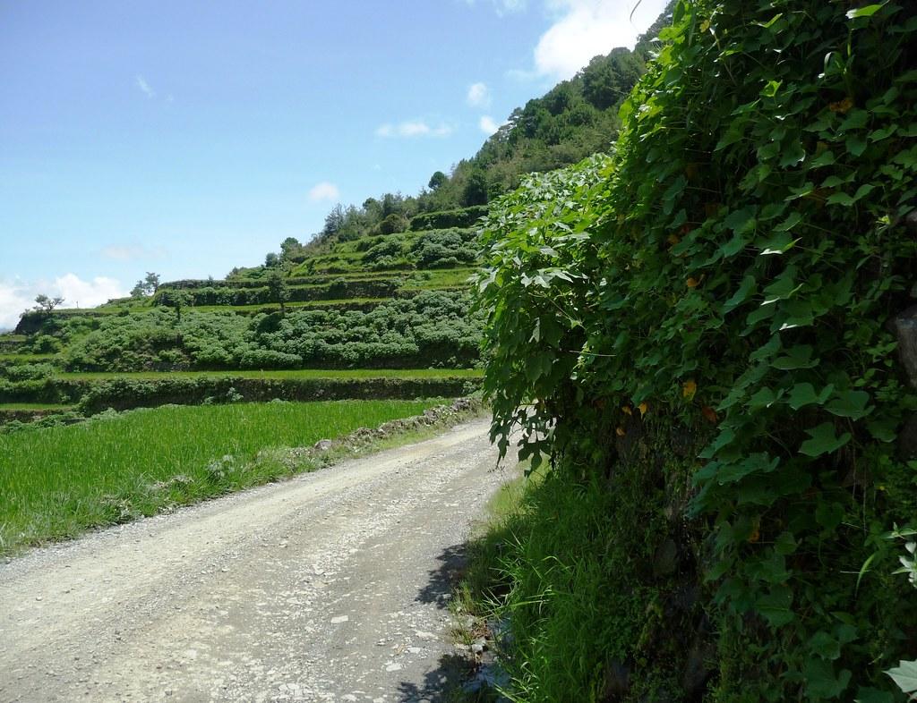 Route-Banaue-Bontoc (49)