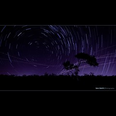 Stars and Spaceships... ([ Kane ]) Tags: longexposure light sky tree night photoshop dark star glow purple aircraft manly australia brisbane planes qld queensland stacking kane spaceships lightroom lota gledhill sillioutte kanegledhill wwwhumanhabitscomau kanegledhillphotography