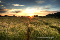 Will you remember me? (Paul Fessey) Tags: sky sun liverpool paul photography nikon tracks fields d300 fessey singheatersing
