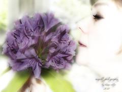334/365 (augcott) Tags: flowers portrait flower self canon purple highkey 365 topaz rhododendrums tamron1750 450d rebelxsi
