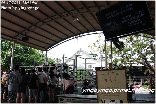 嘉義中埔_綠盈農場20110417_I6976
