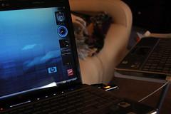 HP laptop (jchurch) Tags: notebook hp laptop pavilion dv4
