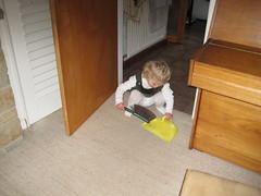 IMG_2319 (green horse) Tags: housework hailie