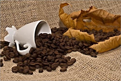 Vai um cafezinho??? 3430847552_45b5003f1d