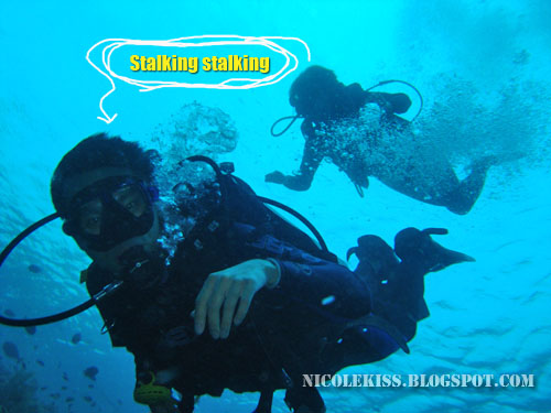 underwater stalker
